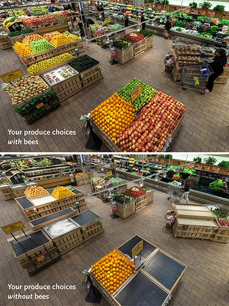 Whole Foods Market photo