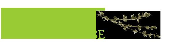 online-herbal-course-herbal-school-program